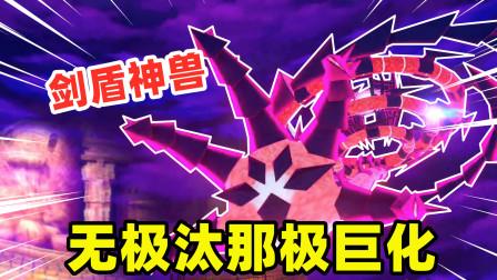 宝可梦剑盾15:无极汰那变成了极巨化形态,河马哥召唤出剑盾神兽