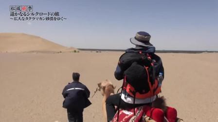 日本节目:中国敦煌骑骆驼,一路看风景,明星感叹这种体验太难得