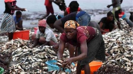 为什么非洲人饿着都不吃的东西却遭中国游客抢购游客不识货