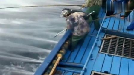 不是喜欢钓鱼吗?来,让你试一天,绝对崩溃