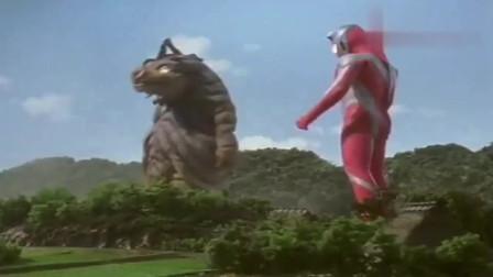 戴拿奥特曼:戴拿直接变身强壮日冕形,巴欧恩当成玩伴,滑稽的玩耍!