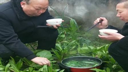 父子俩真搞笑,家里有块菜园,扯个电线在菜园吃起来了!