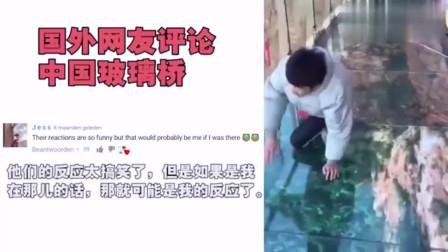 老外看中国:老外看中国很火的玻璃桥视频:从来没有笑的这么厉害!
