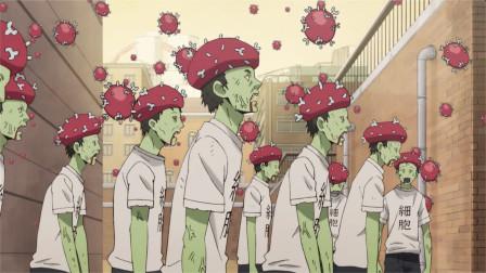 一部动漫告诉你,当人体感染了流感病毒,体内的细胞都在干什么?