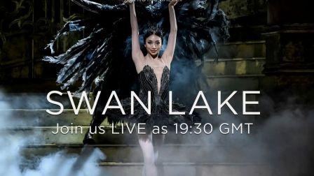【芭蕾排练厅】超清官录全场 英皇《天鹅湖》公开排练 2020.2.13