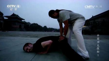 外国小伙武当学功夫,太极中有这样的拳法吗?
