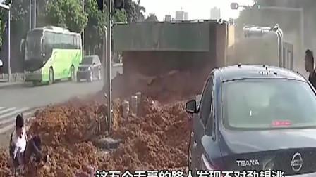 路口的一群路人,明明发现了危险却原地等死,监控拍下全过程