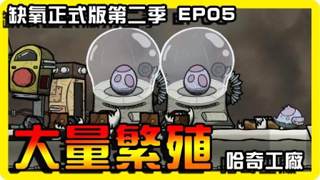 【缺氧】大量繁殖!哈奇快生!! Oxygen not included  正式版  第二季 EP05