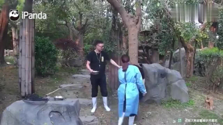 请珍惜这么纯真的熊猫宝宝,它不知道你的套路居然这么多