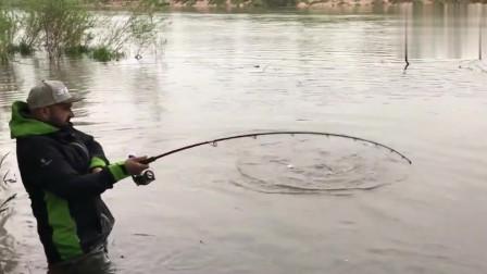 近距离逗钓真不错,鱼竿快被鱼儿拖水里了
