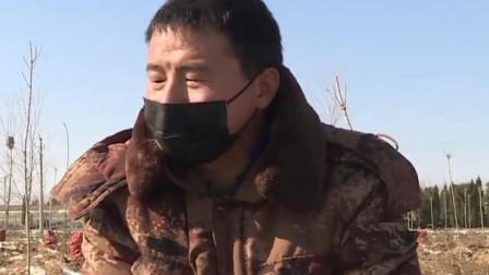 驰援湖北!菏泽男子捐赠50亩胡萝卜:咱有多少就捐多少!