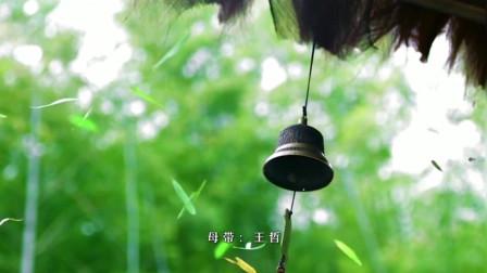 孙艺琪-崔伟立《酒醉的蝴蝶》对唱版
