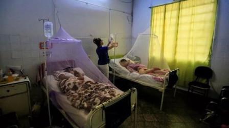 新冠肺炎蔓延之际,南美2国爆发登革热疫情,近10000人确诊感染