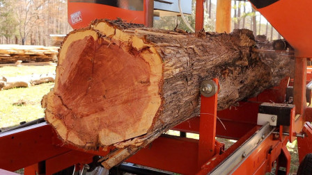 德国木材加工机械!工人技术老练,木材切割一气呵成