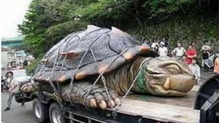 """村民抓到一只""""大龟""""怕是保护动物不敢吃?请专家鉴定吓一跳!"""