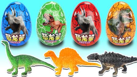 食玩总动员 跟布鲁奥特曼一起拆恐龙蛋认识恐龙!打跑霸王龙救回小甲龙吃巧克力泡芙!