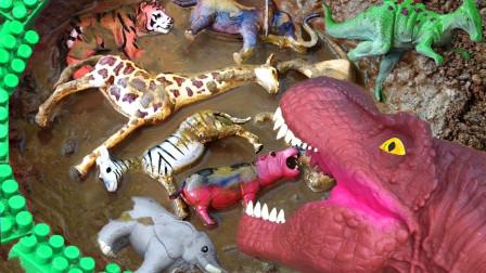 恐龙拯救了泥下的野生动物,大象河马冠龙狮子!