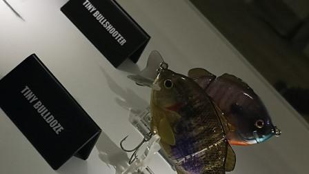 2019年度鱼饵回顾