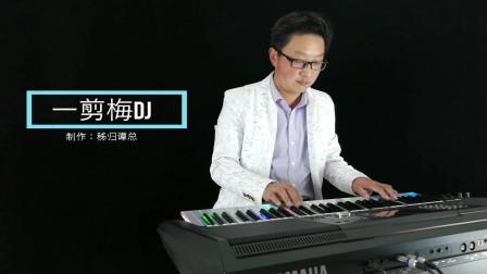 一剪梅DJ版电子琴音乐