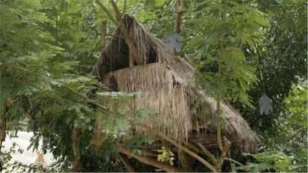 56个民族之外的民族,婚后男人住树上,老婆有需要就用竹竿通知?