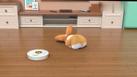 短腿小柯基:这地是用来睡的,可不是用来扫的