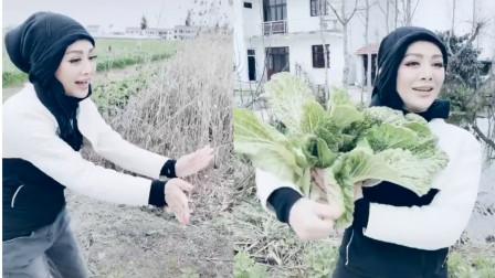 """接地气!宁静农村逛菜园遇粉丝,拿大白菜""""献花""""太实在"""