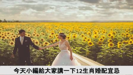 """民俗中的""""生肖婚配歌"""",看看哪些生肖适合婚配,哪些生肖不合呢"""