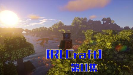 飞天坐骑,大鹏展翅p11——甜萝酱我的世界Minecraft【RLCraft】整合包生存