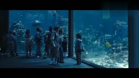 小男孩被欺负,海洋博物馆的鲨鱼狂躁了起来