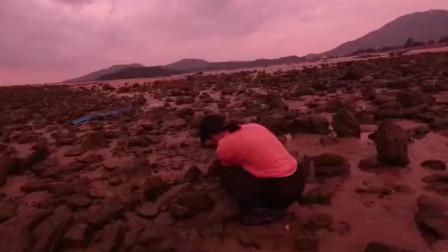 赶海时这些洞一定不要放过,妹子说螃蟹藏在这些洞里