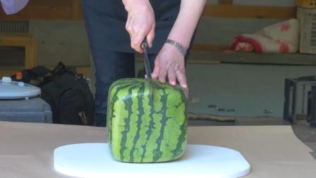 日本天价西瓜,土豪花几万元买了一个,切开后都傻眼了!