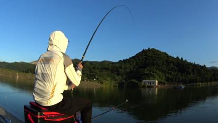 钓鱼实战197,玉米打窝攻草鱼、鳊鱼、翘嘴,半水却聚集了大量的鲫鱼
