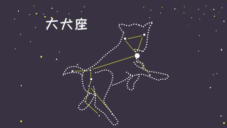 同学们,天狼星所在的星座大犬座,你有没有观察过?