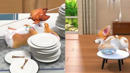 短腿小柯基:柯基真是个吃货,把食物都吃完了,只给主人自己的狗粮