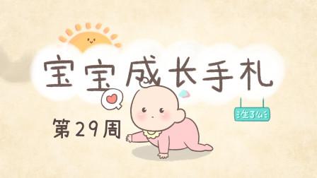 宝宝29周,爬行学坐练习很重要,家长可帮宝宝开辟一块大空间