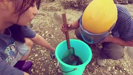 妹子赶海时发现一个水坑,好多大海货都被一锅端了