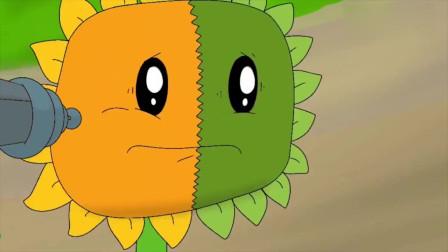 植物大战僵尸:向日葵的半边也要成为僵尸了吗
