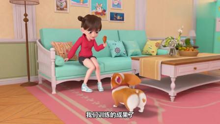 短腿小柯基:宝贝主人,鸡腿才是我如此配合你的动力