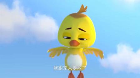 舒克贝塔:小鸟全家去南方过冬,和家人走散了,舒克帮小鸟找家人