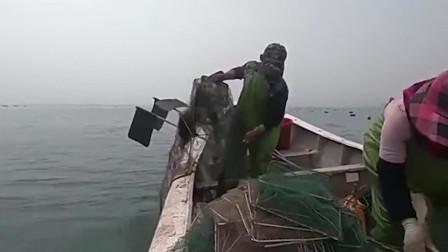 赶海去收放下的地笼,看看有没有大货上钩了