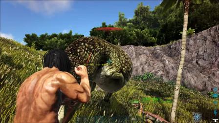 方舟生存进化:小天教双脊龙捕猎被牛龙秒杀
