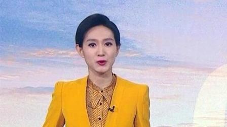 """第三班接载滞留""""钻石公主""""号香港居民的包机顺利返港 早安山东 20200224 高清版"""