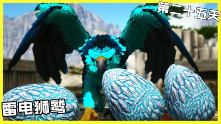 雷电狮鹫潜入飞龙谷偷寒冰龙蛋
