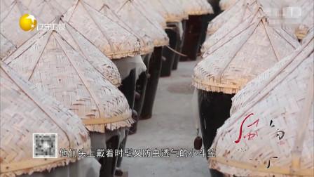 锦州有名的虾酱,一个可以给小菜点睛的神秘材料