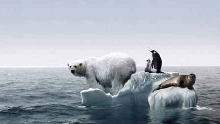 美各界专家警告:气候变暖对全球具有灾难性威胁,这两地风险最大