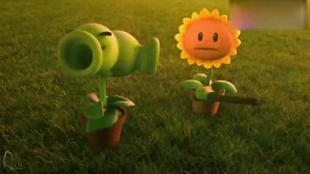 植物大战僵尸:植物们整装待发,准备和僵尸开战了