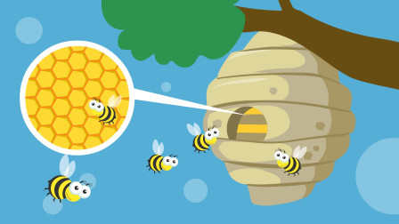 同学们,蜜蜂的蜂窝里面为什么是六角形,而不是圆形或者三角形?