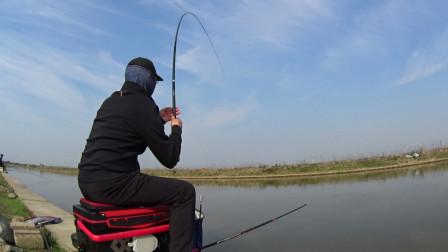 钓鱼实战198,商品饵辅以自制小药,狂拔鲻鱼,所上鱼种丰富