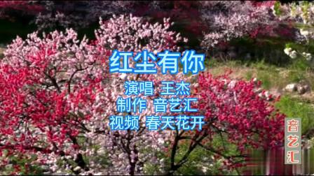 感谢《红尘有你》!这个春天听王杰带你去看漫山遍野的花海,走起了你