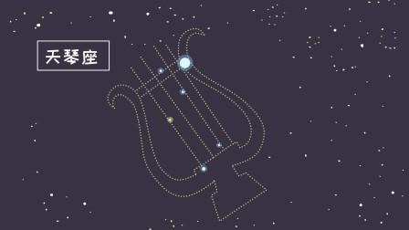 同学们,天琴座是夏季北天银河中最灿烂的星座之一,你有看到过吗?